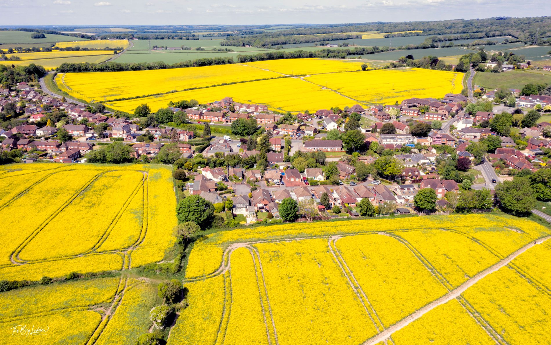 Fields of Gold - Clanfield, Hampshire