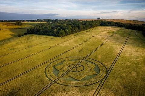 Crop Circle, Wiltshire